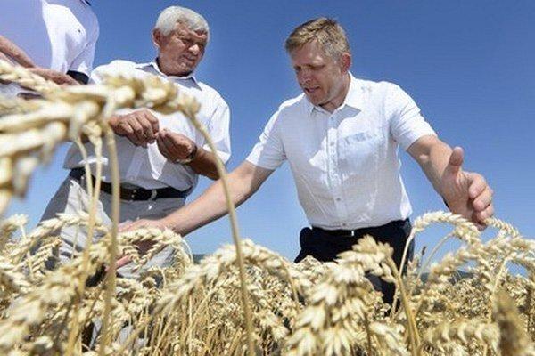 Zmeny pri predaji a kúpe poľnohospodárskej pôdy zrejme vláda do prezidentských volieb, v ktorých Robert Fico kandiduje, neschváli.