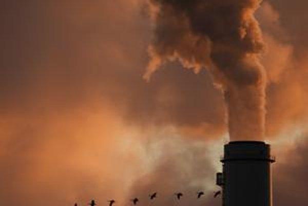Pri Slovensku sú záujemcovia o kúpu emisií opatrní. Meno nám poškodil predaj emisií garážovej firme Interblue Group.