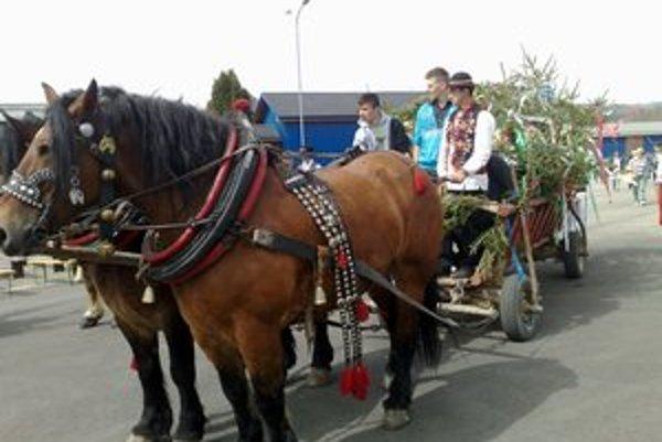 Slávnosť jari. V Hniezdnom priviezli folkloristov vyparádené kone.