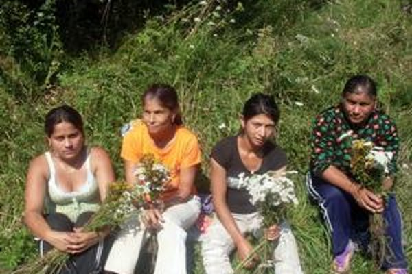 Zber. Ženy odchádzali domov nielen s novými poznatkami, ale priniesli si aj niekoľko užitočných rastliniek.