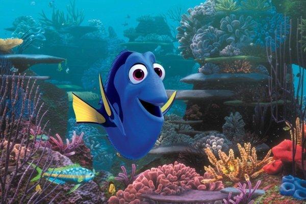 Hľadá sa Dory. Pokračovanie úspešného animovaného filmu od Pixaru.