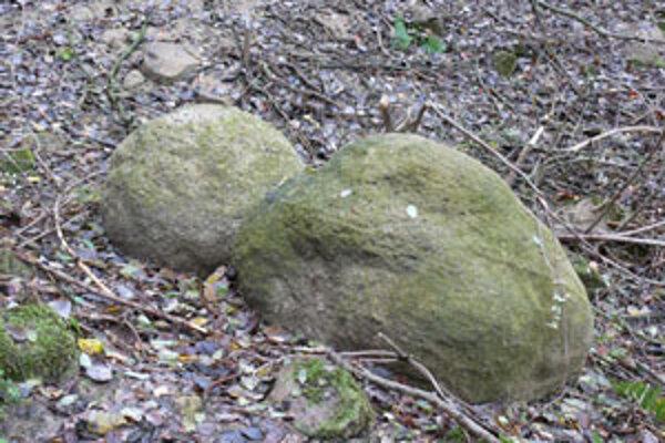 Pieskové gule nájdu ľudia v časti obce Brusno.