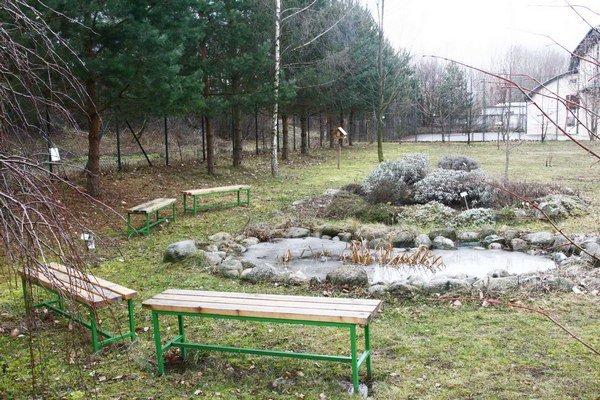 Pred budovou školy majú napríklad malé arborétum, bylinkovú špirálu a jazierko. Pribudnú k nim včelíny.