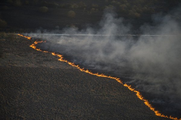 Lesný požiar vyčíňa na 270 hektároch lesa a lesostepi.
