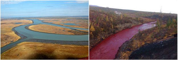 Firma sa zafarbenie rieky snažila zatajiť.