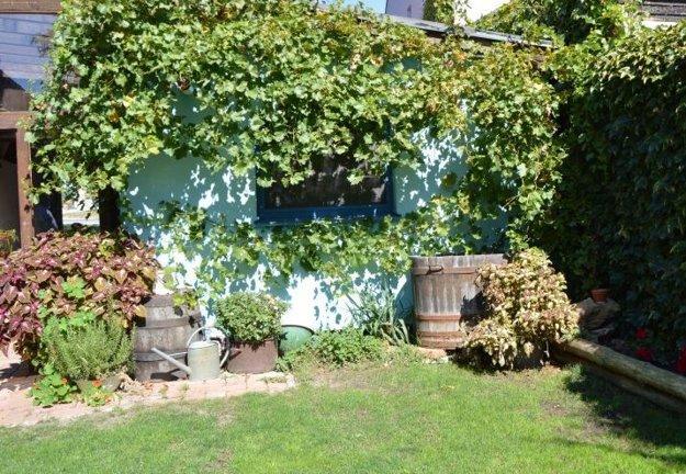 Malé vinárstva dokážu ponúknuť domácu atmosféru.