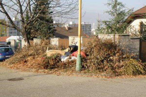 Kopy konárov sú odvážané z mesta postupne. Zatiaľ nie je jasné, kto sa postará o odpad, ktorý pri konáre nanosili ľudia.