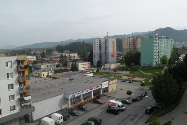 Medveď sa mal pohybovať po ulici Ivana Houdeka.