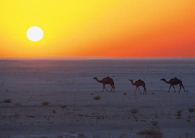 Sharm El Sheikh na Sinajskom polostrove ponúka more aj púšť.