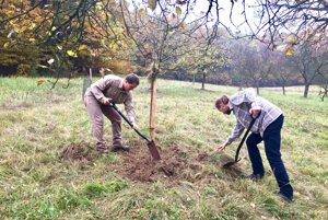 Medzi prvými vysadili ovocné stromky aj v známej miestnej časti Bošáce – Zabudišovej.