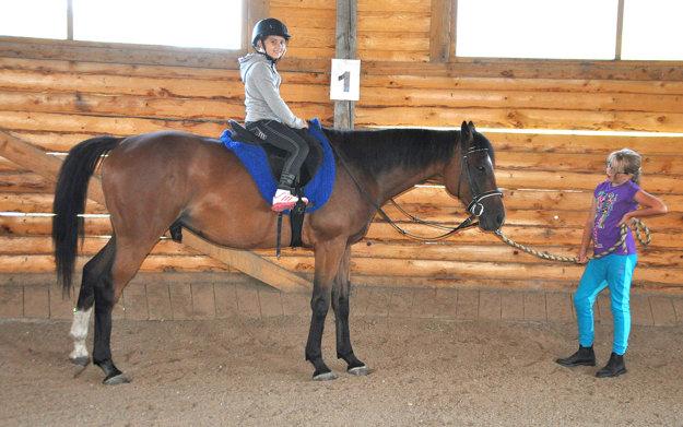 Väčšina koňov slúži na šport a zábavu.