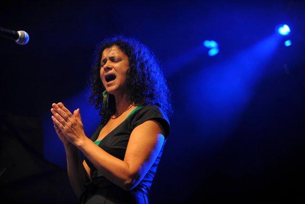 Iva Bittová spolupracovala so skladateľom Vladimírom Godárom niekoľkokrát.