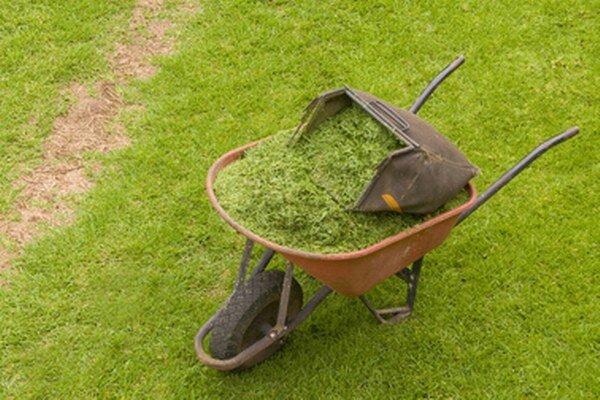 Kam s pokosenou trávou? V mestských rodinných domoch žiaľ často končí v komunálnom odpade. Kompostéry sú jednoznačne vhodnejším riešením.