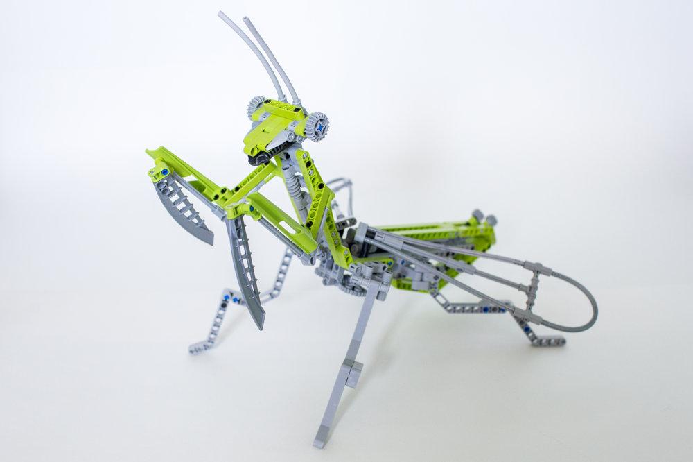 Milan Reindl rád z Lego Technic stavia zvieratá. Jedným z nich je Modlivka nábožná.