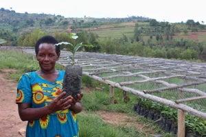 """Asterie Mukangangová vedie rwandské kooperatívne združenie pestovateliek kávy Nyampinga, čo v jazyku kinyarwanda znamená """"krásna žena, ktorá robí múdre rozhodnutia""""."""