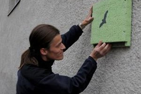 Búdky pre netopiere a vtáky sa môžu upevniť priamo na budovu.
