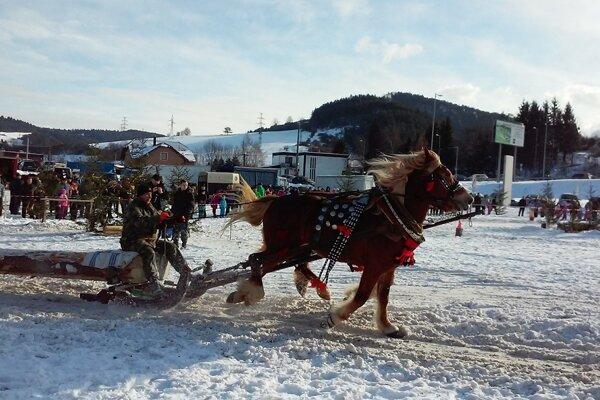 Štrnásť furmanov z troch krajín zapriahlo kone v Hričovskom Pohradí.