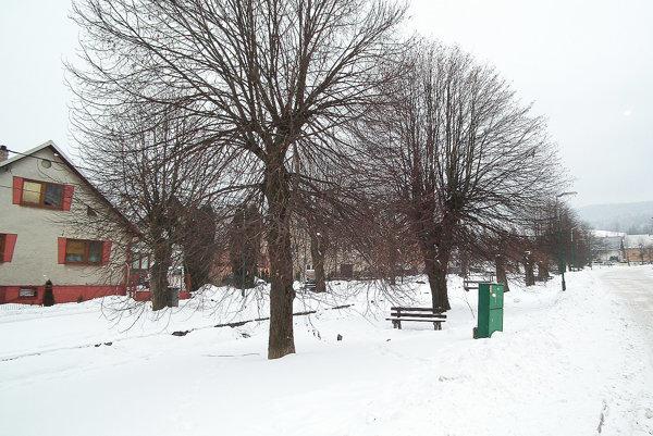 Obec chce park vcentre upraviť.