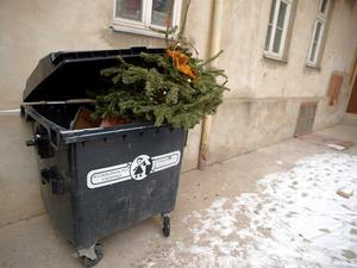 1fed0a245 Smetiari začnú v pondelok so zberom vianočných stromčekov. - SME ...