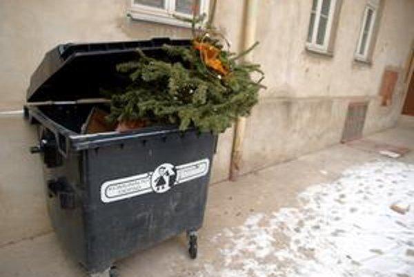 Mestá začínajú so zberom vianočných stromčekov po Troch kráľoch.