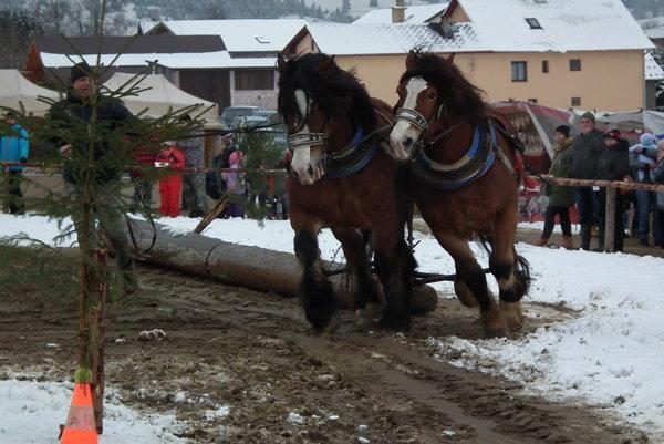 Kone súťažili na presnosť, ale dôležitá bola aj rýchlosť.