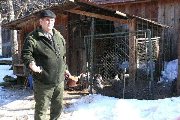 Vladimír Húšťa začal sliepky chovať až na dôchodku.