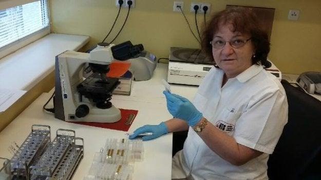 Vedúca lekárka pracoviska NTS v Košiciach Jitka Máčalová pri odčítaní antigénov krvných skupín.