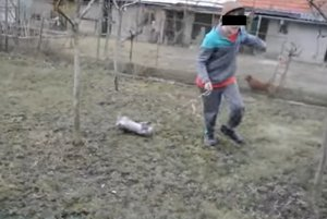 Záber z filmu, v ktorom chlapec bezbrannú mačku vláči po dvore.