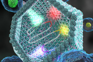 Obrovský vírus získava gény z eukaryotického hostiteľa.