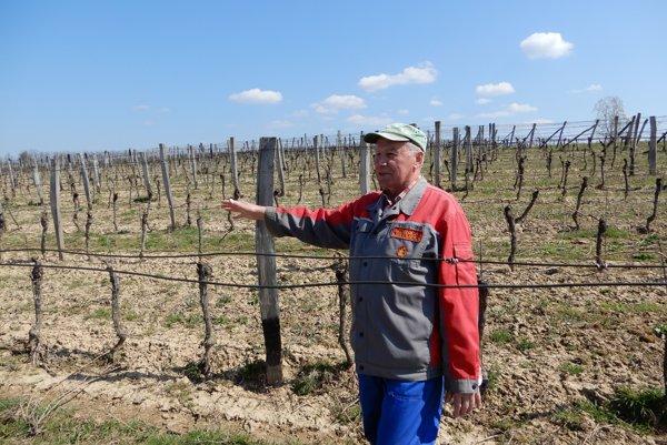 Profesionálny vinár Pavol Michálek starší.