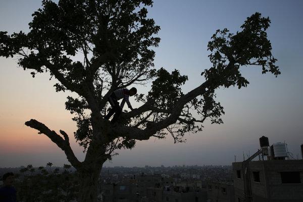 Gaza v tme.