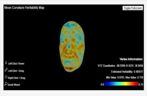 Mapa dedičnosti vytvorená z 3D skenov tvárí.