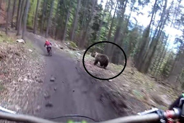 Medveď sledoval vtedy ešte nič netušiaceho cyklistu.