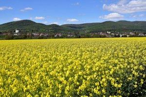 Na snímke pohľad na obec Zemplínska Teplica v okrese Trebišov.