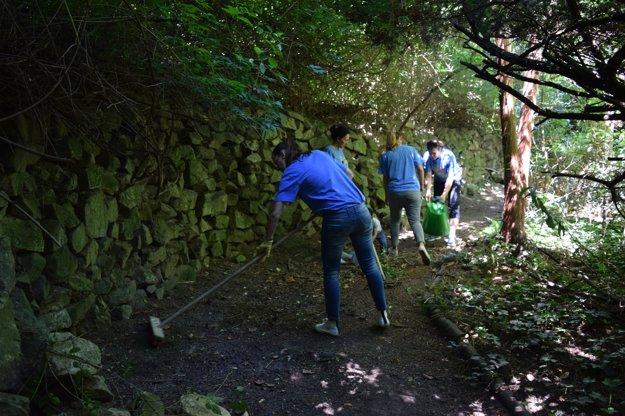 Skupina 25 ľudí pracuje na udržiavaní Kochovej záhrady v Bratislave.