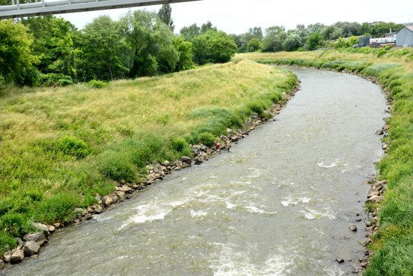 Okolie Hornádu. Na pravom brehu rieky plánujú vyrúbať vodohospodári tie stromy, ktoré zavadzajú stavbe.
