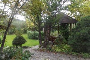 Záhrada, ktorá vyhrala minulý rok. Tento rok súťažia o najkrajšiu kvetinovú výzdobu.