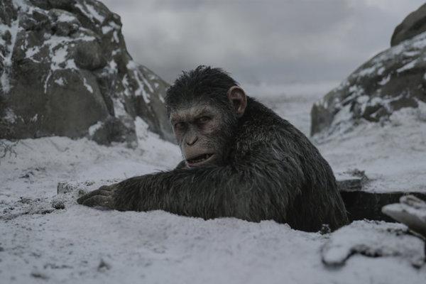 Vojna o planétu opíc prichádza do kín štvrtok 13. júla.