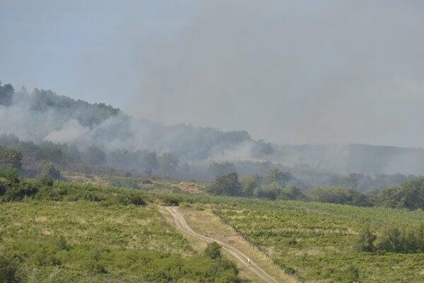 Požiar lesného porastu a vinohradov v bratislavskej Rači.