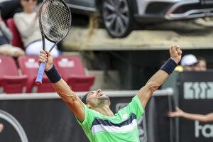 David Ferrer vyhral turnaj v Bastade už tretí raz.