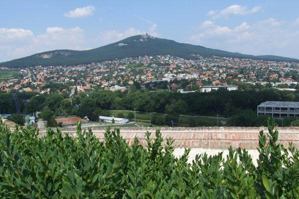 Najväčší záujem spomedzi výborov bol o VMČ Zobor, Dražovce - tieto dve mestské časti tvoria jeden volebný obvod.