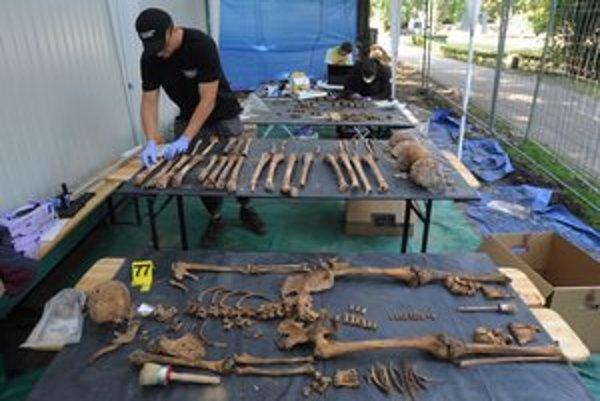 Poľskí odborníci celé leto exhumovali pozostatky tiel z masového hrobu na varšavskom cintoríne.
