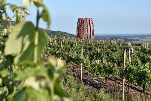 Tokaj. Slávna vinohradnícka oblasť zasahuje aj maďarské územie.