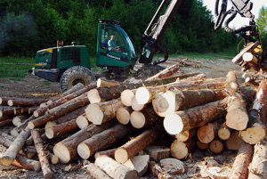 Drevo na stavbu drevodomu musí byť zo Slovenska.