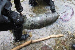 Zásah vo Svidníku. Letecká bomba s hmotnosťou 100 kg sa našla v rieke.