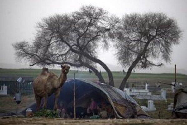 Príbytok beduínov.