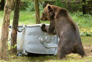 Medvede lákajú často odpadky v kontajneroch.