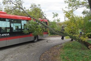 Strom zasiahol aj autobus.