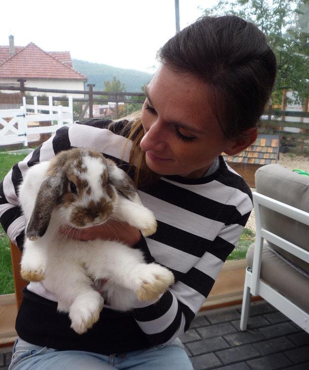 Obľúbencami sa stali králiky, vtomto prípade ide ozdrobnelého barana.