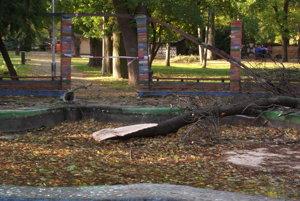 Časť stromu spadla do fontány
